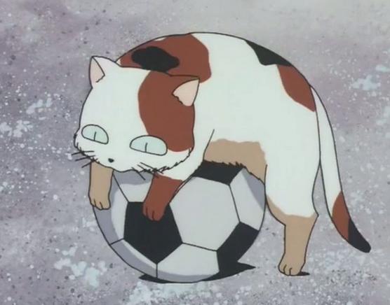 Buyo on a ball
