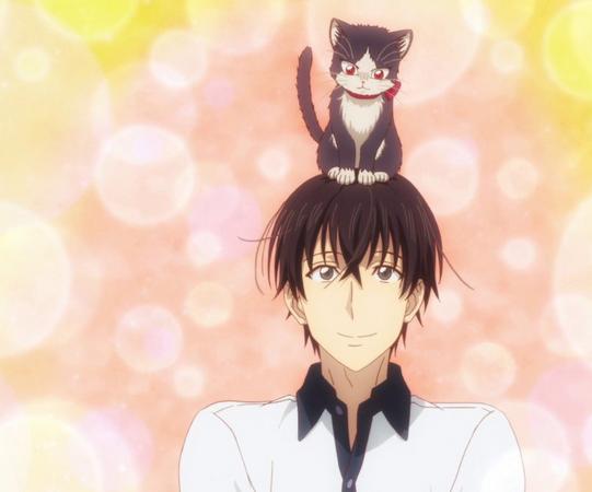 haru on mikazuki's head